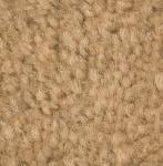 Monotone  Sahara